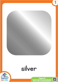 Advanced Colors Educational Flashcard Set - Silver