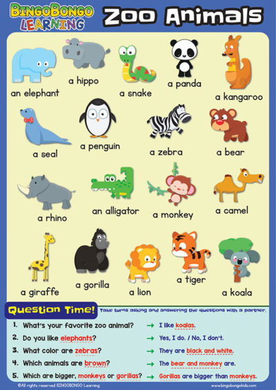 Zoo Animals Giant laminated classroom posters